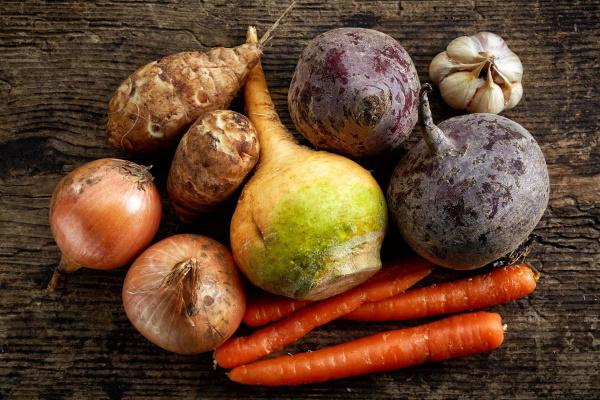 Корнеплоды. Список овощей, фото растений, классификация и все о них