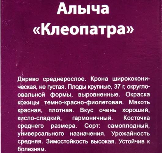 Алыча для Подмосковья. Лучшие сорта, фото, описание